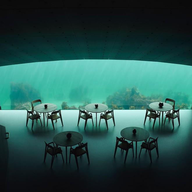 Nhà hàng dưới nước đầu tiên tại châu Âu gây sốt trên toàn thế giới: Đầu tháng 4 mới khai trương nhưng đã kín lịch đặt chỗ đến tận tháng 9 - Ảnh 10.