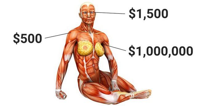 Góc giả sử: Nếu có thể thoải mái thay thế nội tạng bị hỏng, liệu con người có trở nên bất tử? - Ảnh 1.