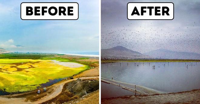 Người đàn ông này đã nghĩ ra ý tưởng thiên tài để làm sạch hồ nước bị ô nhiễm, và đó là thứ Trái đất đang rất cần - Ảnh 3.