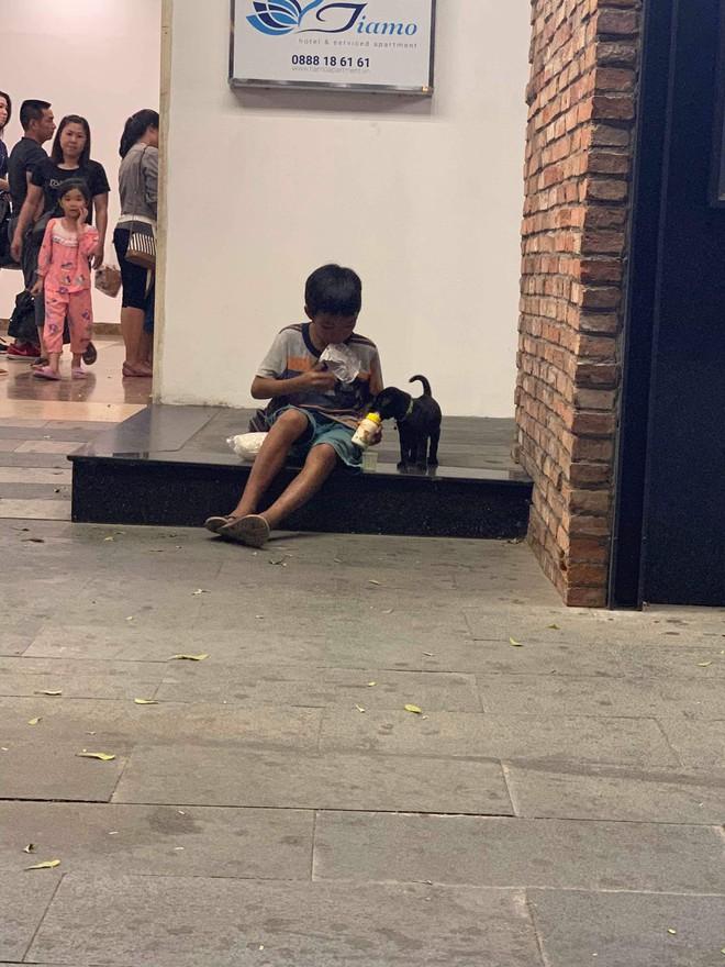 Cậu bé bán vé số chia đôi hộp sữa cho chú chó: Tiết lộ khoảnh khắc gặp gỡ đầy xúc động - Ảnh 4.