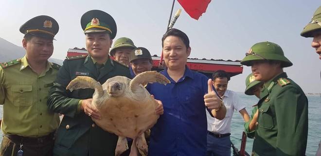 Đi đánh cá bắt được rùa biển quý hiếm đe dọa tuyệt chủng - Ảnh 2.