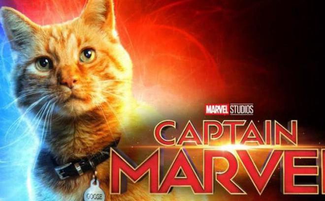Không phải Captain Marvel, chú mèo dễ thương mới là chìa khóa đánh bại Thanos?