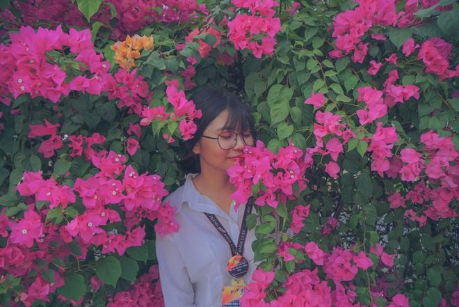 Chụp cả trăm kiểu đều đẹp, đây là giàn hoa được dân sống ảo truy lùng tại một trường đại học ở Việt Nam - Ảnh 5.