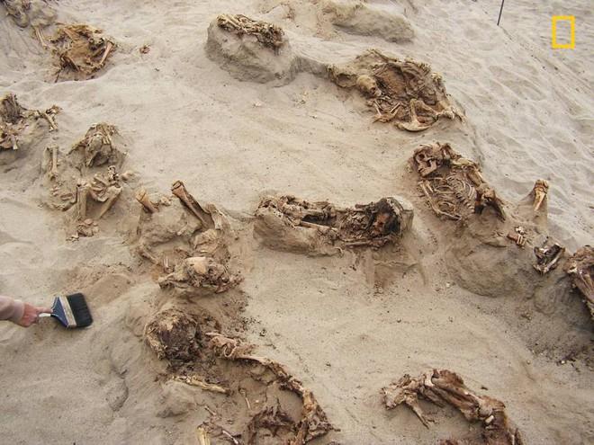 Khai quật khu hiến tế trẻ em lớn nhất lịch sử: Hàng trăm bộ xương lộ ra, đã bị lấy mất nội tạng - Ảnh 3.