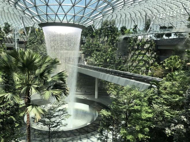 Mãn nhãn với sân bay Singapore tỉ đô sắp khai trương - Ảnh 2.