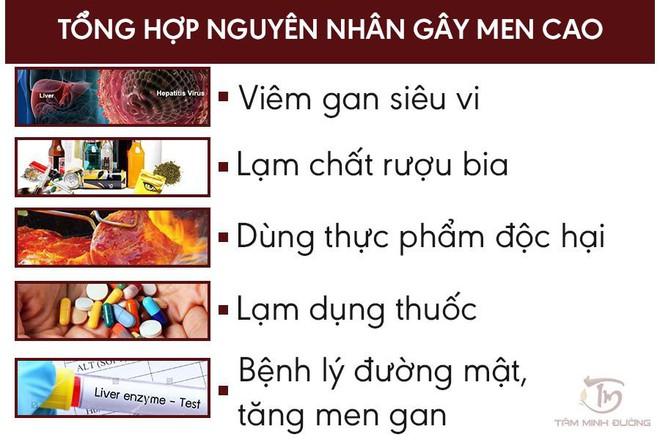 Men gan cao: Nguyên nhân, triệu chứng và cách chữa bệnh men gan tăng cao - Ảnh 2.