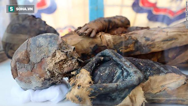 Bí ẩn hàng chục xác ướp chuột trong ngôi mộ cổ ở Ai Cập - Ảnh 2.