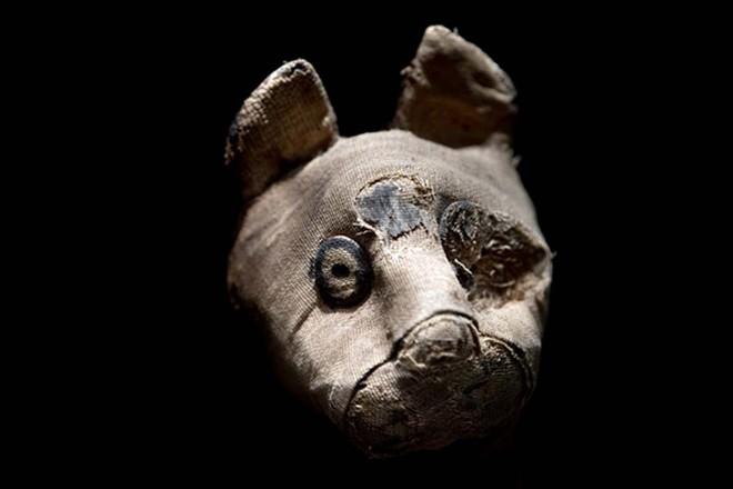Bí ẩn hàng chục xác ướp chuột trong ngôi mộ cổ ở Ai Cập - Ảnh 3.