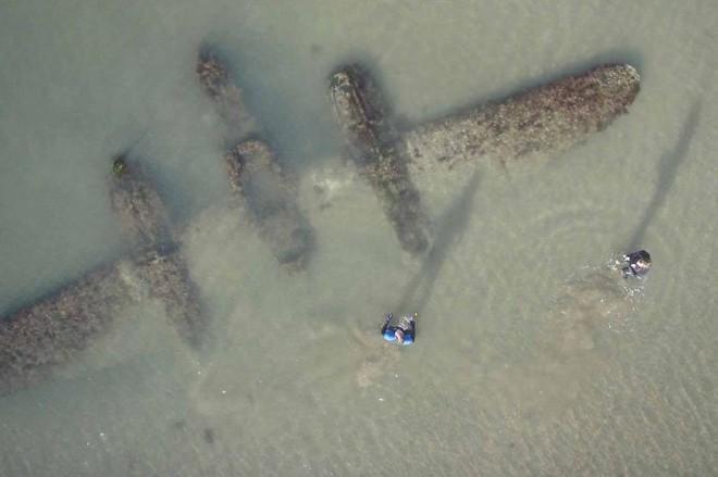 Chùm ảnh: Những tác phẩm nghệ thuật siêu thực nhất của tạo hóa mà con người từng tìm thấy được trên bãi biển - Ảnh 13.