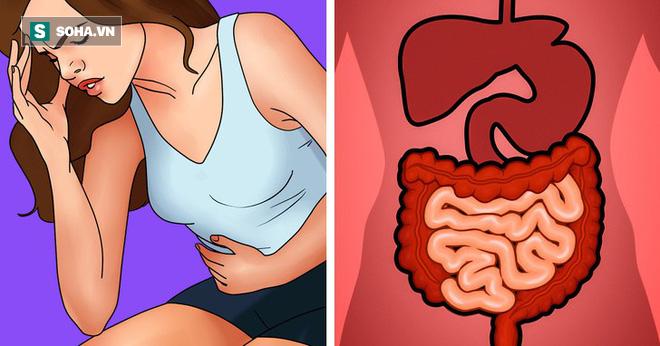 10 dấu hiệu cảnh báo cơ thể bị độc tố tấn công: Hãy nhanh thải độc ngay - Ảnh 1.