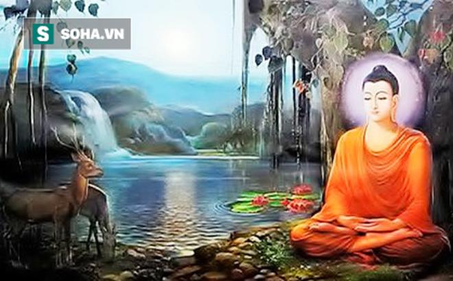 7 quy tắc theo triết lý nhà Phật để sống ung dung tự tại, thành công tự tới