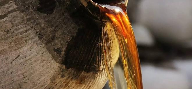6 thực phẩm giúp trường thọ được thế giới tôn vinh: Chợ Việt có nhiều ai cũng nên ăn - Ảnh 5.