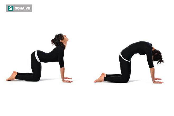 8 bài tập chữa đau lưng hiệu quả nhanh: Ai tập đều đặn sẽ không còn lo bệnh tật làm phiền - Ảnh 2.