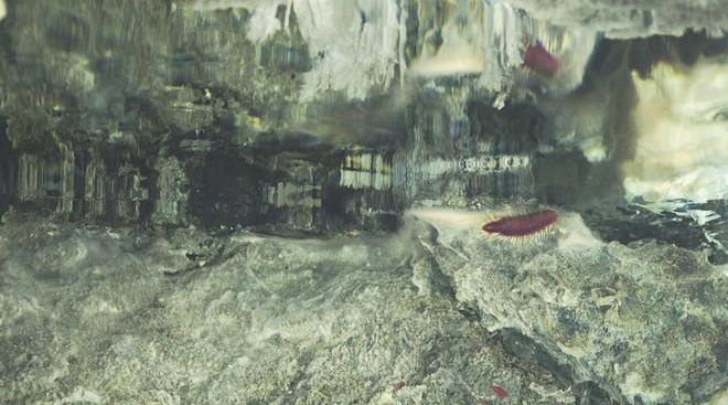 Tháp hồng soi bóng hồ gương dưới đáy biển: Kỳ quan tuyệt đẹp mới được tìm ra tại California - Ảnh 6.