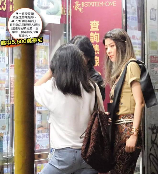 Hoa hậu Hong Kong Trần Tuệ Lâm lại mua biệt thự bạc tỷ, để dành 20 căn bất động sản cho 2 quý tử - Ảnh 1.