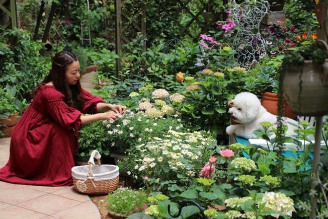 Khu vườn rực rỡ như xứ sở thần tiên của cô gái xinh đẹp với đủ loại hoa khoe sắc - Ảnh 2.
