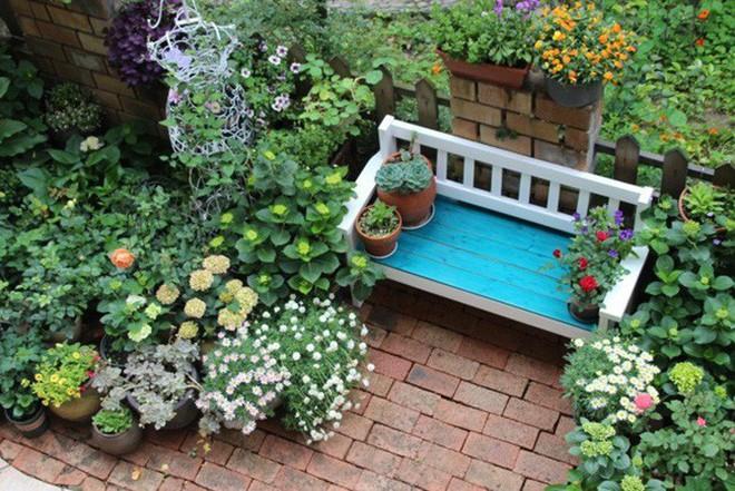 Khu vườn rực rỡ như xứ sở thần tiên của cô gái xinh đẹp với đủ loại hoa khoe sắc - Ảnh 13.