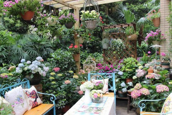 Khu vườn rực rỡ như xứ sở thần tiên của cô gái xinh đẹp với đủ loại hoa khoe sắc - Ảnh 14.