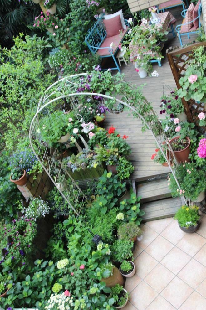 Khu vườn rực rỡ như xứ sở thần tiên của cô gái xinh đẹp với đủ loại hoa khoe sắc - Ảnh 15.