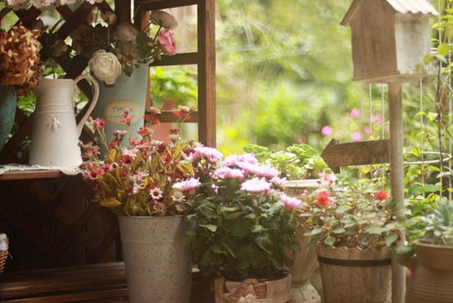Khu vườn rực rỡ như xứ sở thần tiên của cô gái xinh đẹp với đủ loại hoa khoe sắc - Ảnh 10.