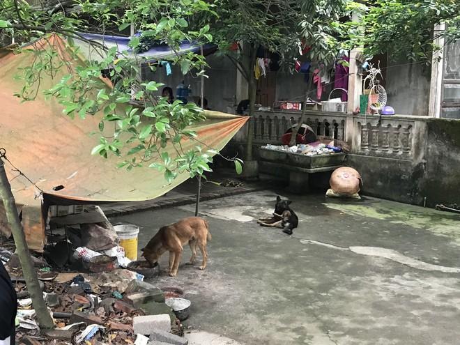 GĐ TT huấn luyện chó nghiệp vụ: Khi bị chó tấn công nên đứng yên như cây, nằm như khúc gỗ - Ảnh 2.