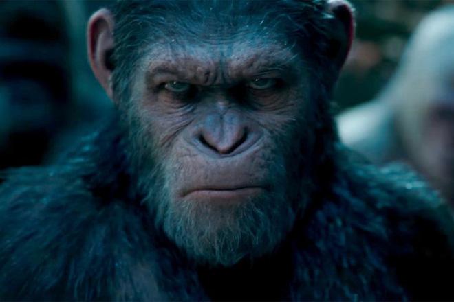 Khoa học tạo ra những con khỉ với não bộ phát triển như người: Kịch bản Hành tinh khỉ sắp xảy ra? - Ảnh 1.