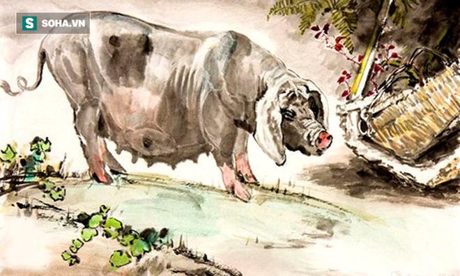 3 con giáp có sức khỏe phi thường, song chủ quan nên về sau dễ sinh bệnh tật - Ảnh 3.
