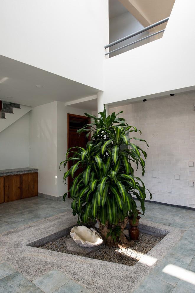 Thiết kế lạ khiến căn hộ này ở trong nhà nhưng cũng có cảm giác như đang ngoài trời - Ảnh 5.