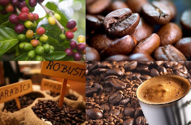 Uống cà phê rất nhiều lợi ích, nhưng thời điểm này thì không nên uống - Ảnh 3.