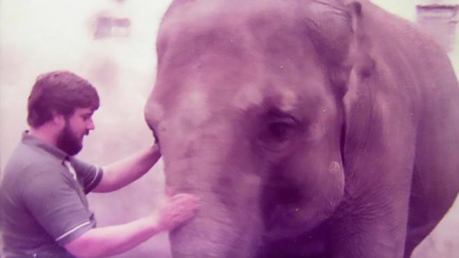 Clip: Người quản tượng xúc động khi con voi 52 tuổi vẫn nhận ra ông sau 32 năm xa cách - Ảnh 1.