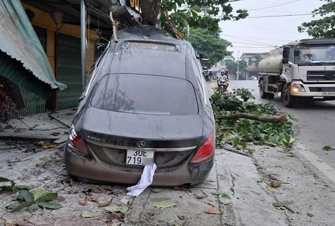 Ô tô Mercedes mất lái 'trèo' lên cây bàng, người dân giải cứu tài xế đưa đi cấp cứu - Ảnh 1.
