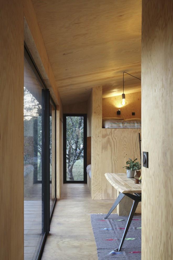 Độc đáo với cabin 22m2 có 2 phòng ngủ riêng biệt - Ảnh 6.