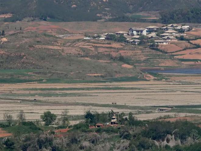 Cảnh dân Triều Tiên vật vã chống hạn trên đồng, xin viện trợ khẩn - Ảnh 1.