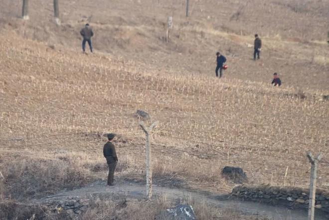Cảnh dân Triều Tiên vật vã chống hạn trên đồng, xin viện trợ khẩn - Ảnh 4.