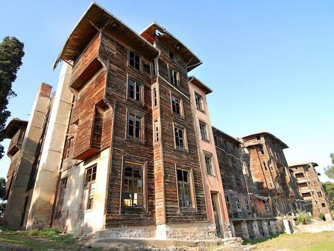 10 công trình kiến trúc của con người bị tự nhiên... chiếm giữ - Ảnh 6.