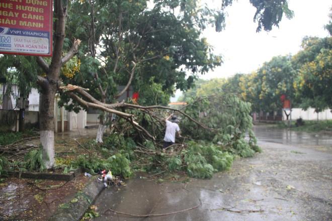 Mưa đá, gió lốc càn quét Nghệ An, Hà Tĩnh khiến nhiều nhà hư hỏng, cây đổ hàng loạt - Ảnh 1.