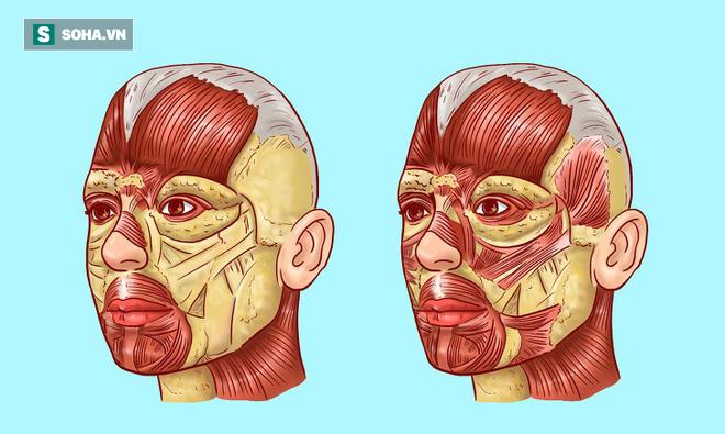 Bài mát xa Korugi nổi tiếng của người Nhật giúp khuôn mặt trẻ lâu: Nam nữ đều nên thử - Ảnh 1.