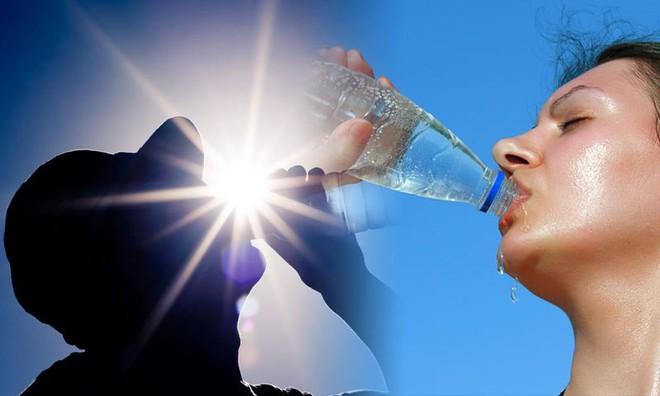 Tại sao nắng nóng có thể gây chết người? Hiểu đúng để sống sót qua những ngày nắng cháy da thịt - Ảnh 4.