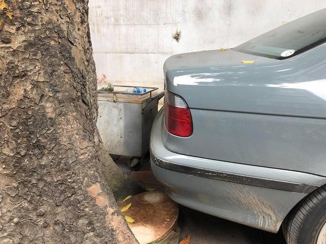 Màn đỗ xe đỉnh cao trên phố Hà Nội khiến dân mạng hoang mang: Xe hay cây có trước? - Ảnh 5.