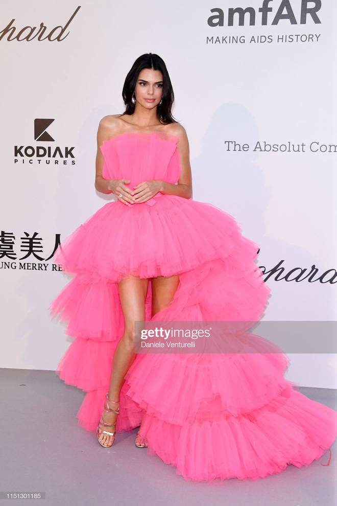 Hút hết mọi ánh nhìn và truyền thông, mỹ nhân này mới chính xác là tâm điểm chú ý tại LHP Cannes 2019 - Ảnh 3.