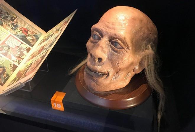 Câu chuyện về những thứ kỳ quái nhất từng được đem ra trưng bày trong bảo tàng: Não, thủ cấp và bộ phận sinh dục con người - Ảnh 5.