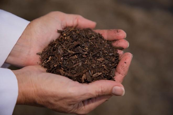 Sợ chôn và hỏa táng gây ô nhiễm môi trường, một bang của Mỹ cho phép ủ xác người chết thành phân bón cây trồng - Ảnh 2.