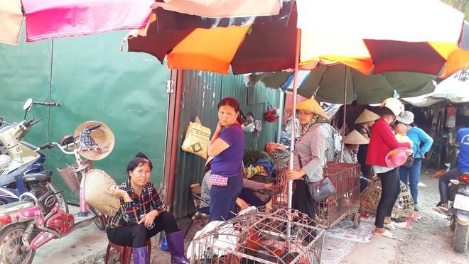 Tiểu thương khu chợ ở Điện Biên: Mẹ nữ sinh đi bán gà cho vui, trông không giống buôn bán - Ảnh 3.