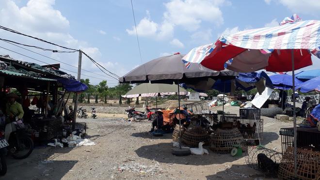 Tiểu thương khu chợ ở Điện Biên: Mẹ nữ sinh đi bán gà cho vui, trông không giống buôn bán - Ảnh 1.