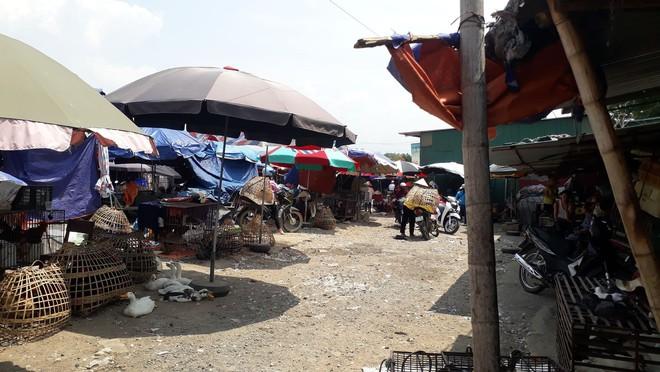 Tiểu thương khu chợ ở Điện Biên: Mẹ nữ sinh đi bán gà cho vui, trông không giống buôn bán - Ảnh 2.