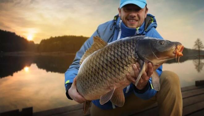 Ăn cá rất tốt, nhưng 4 loại cá này không nên ăn tùy tiện, không có lợi cho sức khỏe - Ảnh 6.