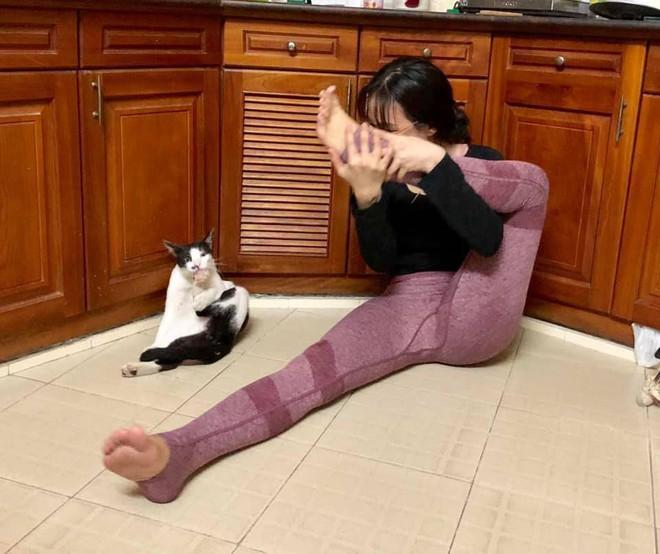 Cô gái đang tập Yoga thì phát hiện loạt phản ứng không ngờ từ chú mèo ngồi bên cạnh - Ảnh 4.
