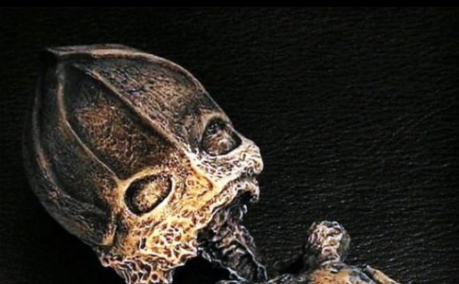 """Sự thật sau xác """"người lùn ngoài hành tinh"""""""