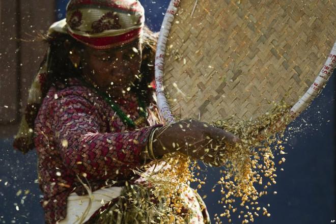 7 ngày qua ảnh: Tượng thánh phủ đầy rắn sống diễu hành trong lễ hội - Ảnh 10.