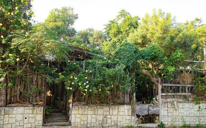 Ngôi nhà tồn tại bền vững với thiên nhiên sau 30 năm bất chấp thiên tai nhờ những bí quyết tuyệt vời của gia chủ